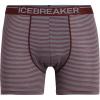 Icebreaker Men's Anatomica Boxers - Small - Port Royale