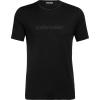 Icebreaker Men's Tech Lite SS Crewe - Icebreaker Wordmark - Small - Black