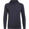 Icebreaker Men's Momentum Hooded Pullover - XL - Panther