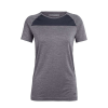 Icebreaker Women's Motion Seamless SS Crewe - Large - Panther Heather