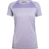 Icebreaker Women's Motion Seamless SS Crewe - Small - Orchid Heather
