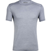 Icebreaker Men's Amplify SS Crewe - Small - Mineral Heather