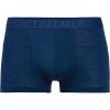 Icebreaker Men's Anatomica Cool-Lite Trunk - Medium - Estate Blue