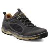 Ecco Men's Ulterra Lo GTX Shoe