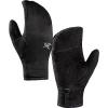 photo: Arc'teryx Men's Delta Mitten