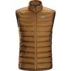 photo: Arc'teryx Men's Cerium LT Vest