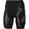 Alpine Stars Men's Evolution Short