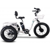 Emojo Caddy PRO Adult Fat Tire Electric Tricycle - 500W - 7 Speed