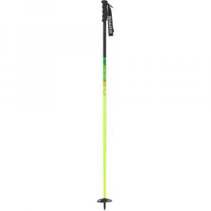 Swix Vandal Ski Poles