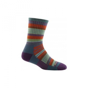 Darn Tough Sierra Stripe Micro Crew Light Cushion Socks - Women's 129409