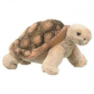 Tortoise - 8 in