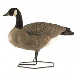 DOA Decoys Rogue Series Full-Body Canada Goose 6 Pack