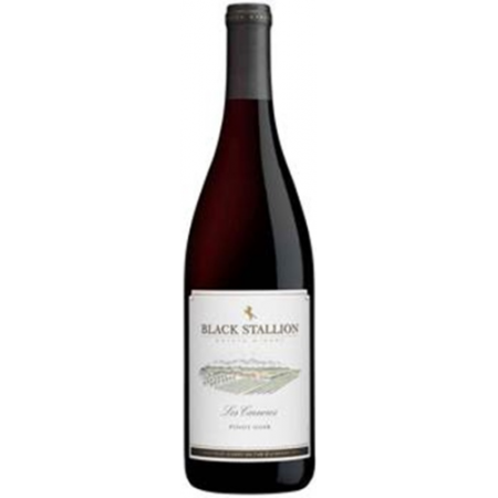 Black Stallion Pinot Noir  2012 750ml