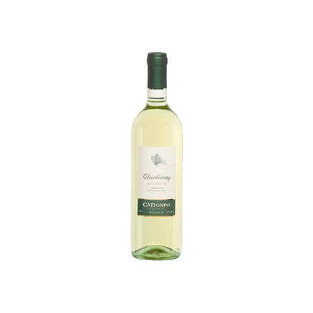 Cadonini Chardonnay  2013 1.5Ltr