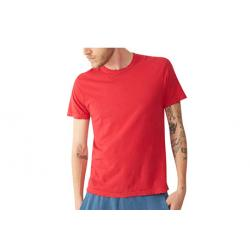 Alternative Apparel Destroyed Short Sleeve Tee - Men's