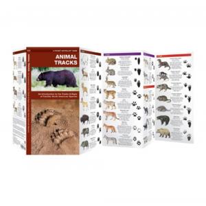 Waterford Press Animal Tracks