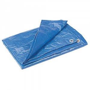 photo: REI Blue Poly Tarp 12'x10' tarp/shelter
