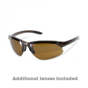 Smith Parallel D-Max Sunglasses, Brown