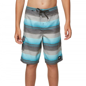 O'neill Big Boys' Santa Cruz Stripe Boardshorts