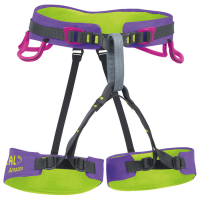 Beal Amazon Harness, Purple/lime