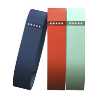 Fitbit Flex Accessory Bands, Large
