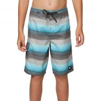 ONeill Big Boys Santa Cruz Stripe Boardshorts