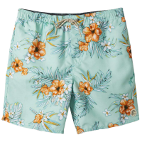 O'neill Men's Tropic Volley Short
