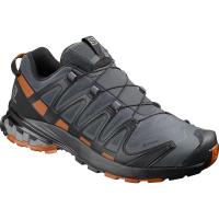 Salomon Men's Xa Pro 3D V8 Gtx Trail Running Shoe - Size 8