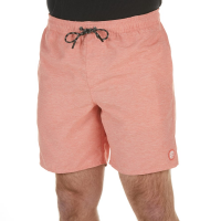 O'neill Young Men's Seabreeze Volley Boardshorts