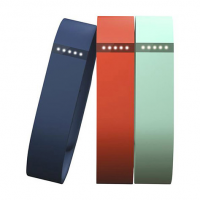 Fitbit Flex Accessory Bands, Small