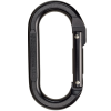 photo: Black Diamond Oval Carabiner