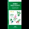 photo: Waterford Press Edible Wild Plants