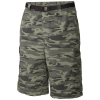Columbia Mens Silver Ridge(TM) Printed Cargo Shorts