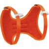 photo: Petzl Body Chest Harness