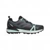 Adidas Outdoor Terrex Skychaser Lt Gtx, Ash Grey/Black/Clear Mint, 10