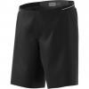 Adidas Outdoor Terrex Agravic Men's Short, Black/Black, 40