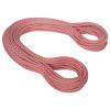 Mammut 9.8mm Eternity Classic Rope